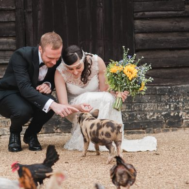 Couple with the pigs