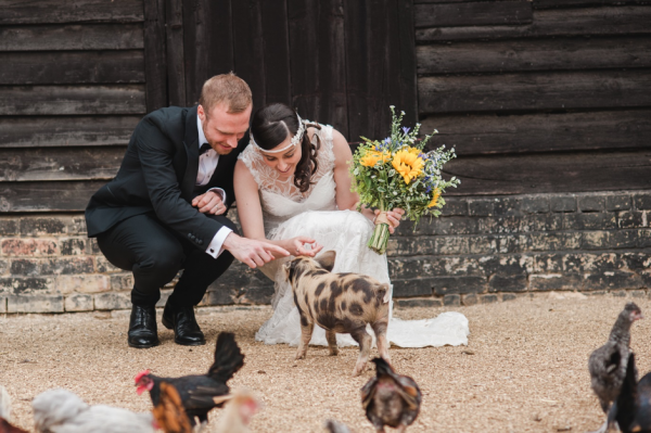 Newly wedded couple with pig at our Essex barn wedding venue
