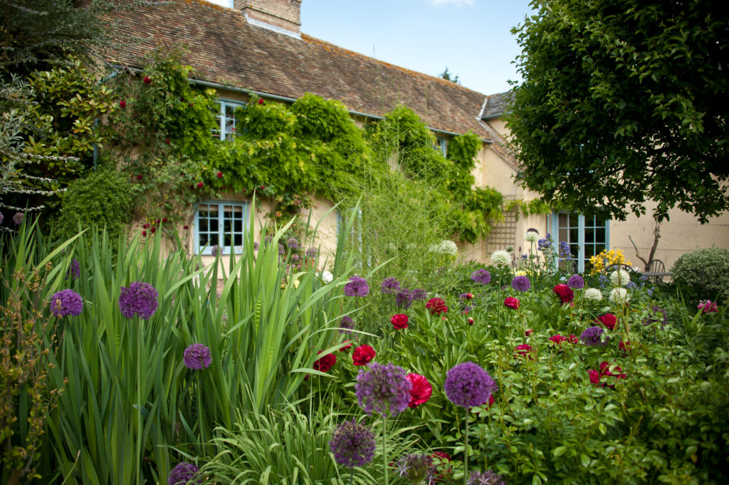 Gardens at South Farm with colourful pink and purple blooms