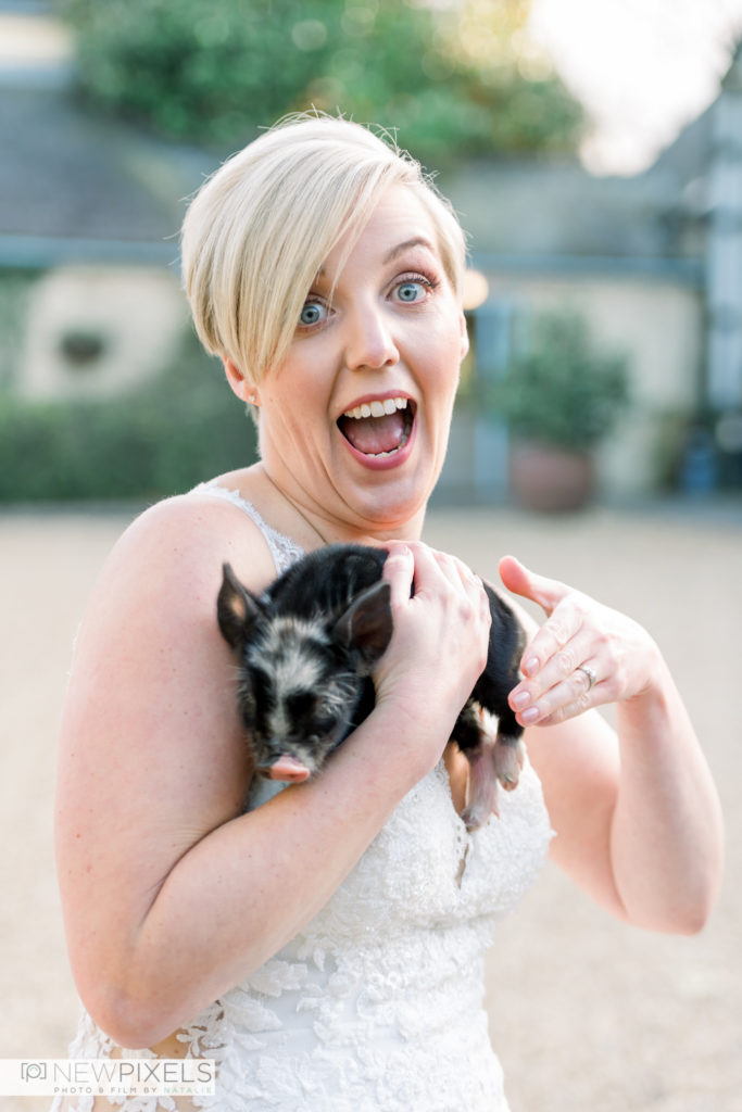 South-Farm-Wedding-with-animals-Bride-and-piglet-at-farm-wedding-New-Pixels-Photography